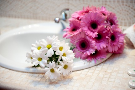 Bouquet de gerberas fucsia